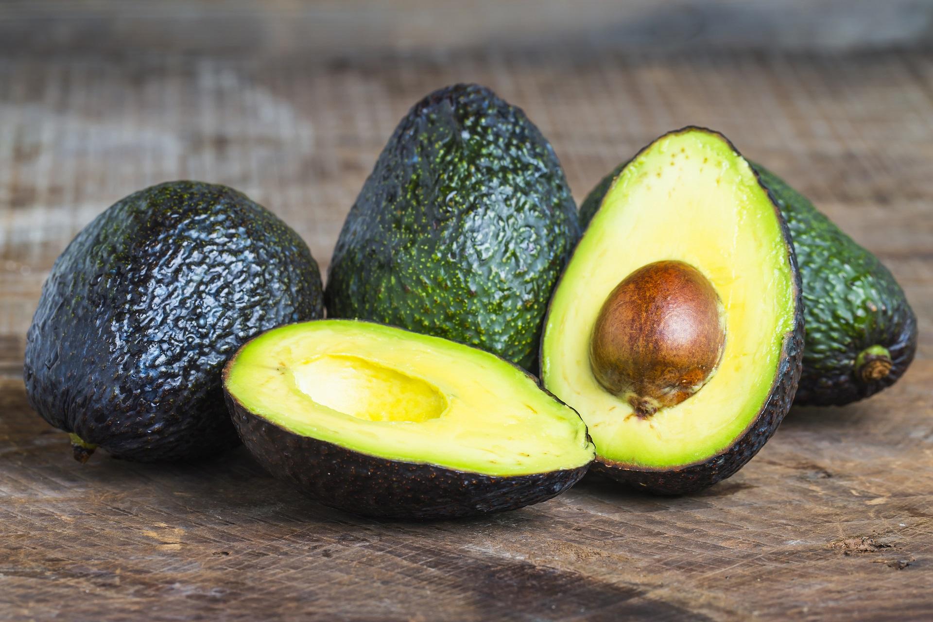 Ekilib Nutrición y Dietética | Mejora tu memoria para los exámenes
